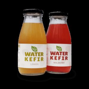 water_kefir_3