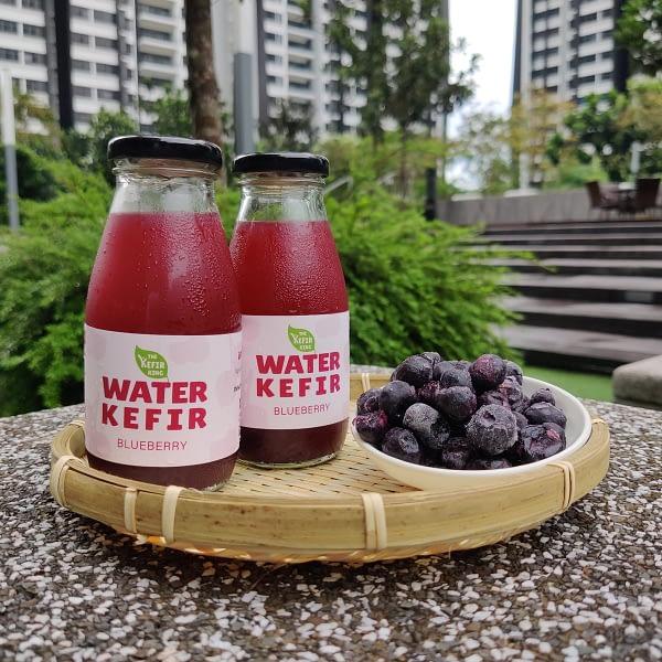 The Kefir King - Blueberry Water Kefir