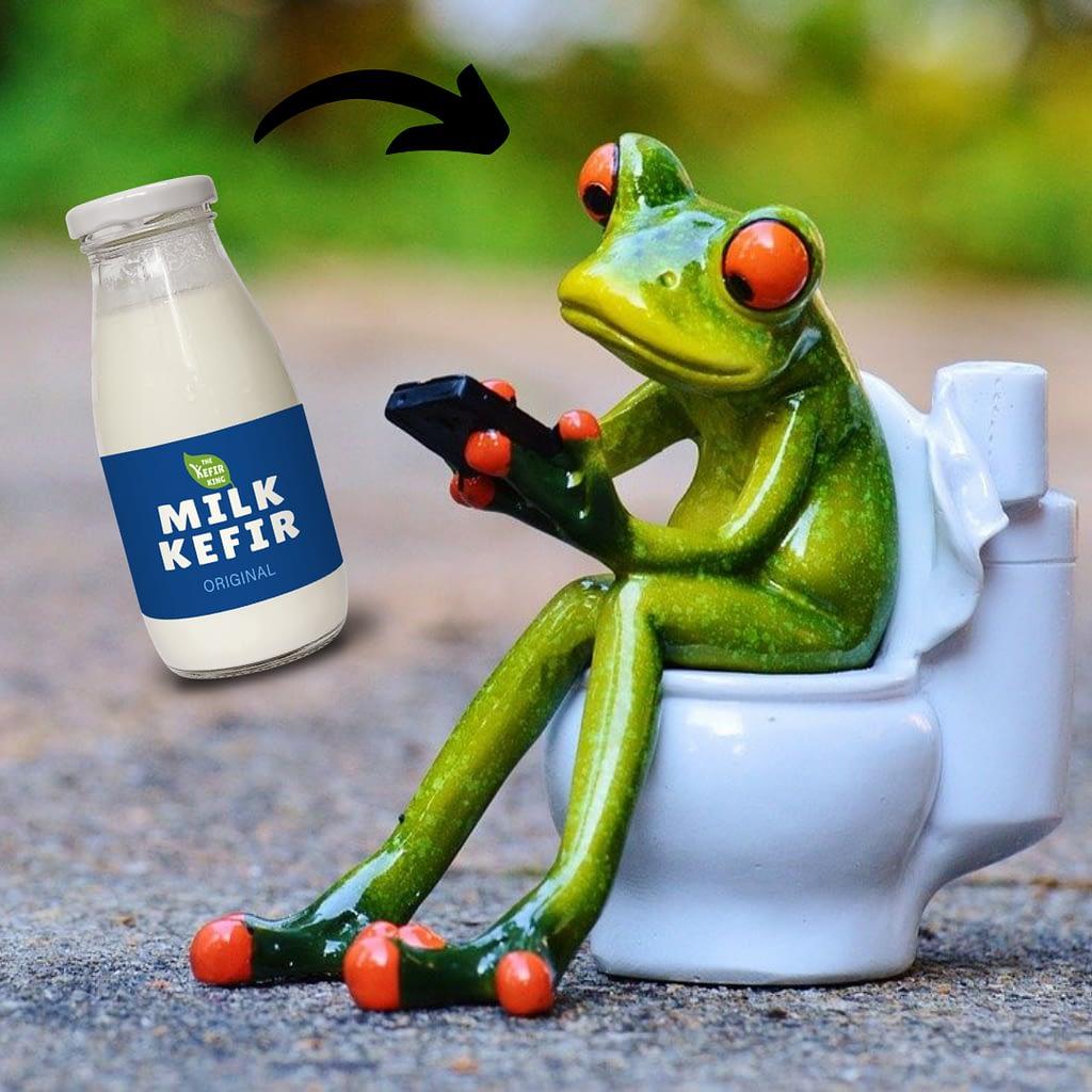 Will Kefir help you poop?