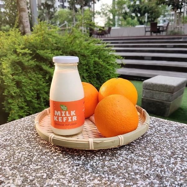 The Kefir King - Orange Infused Milk Kefir